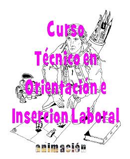 curso tecnico insercion laboral